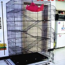 Pets Junior Queen selection of low double encryption folded three or four birds cage kitty cottages