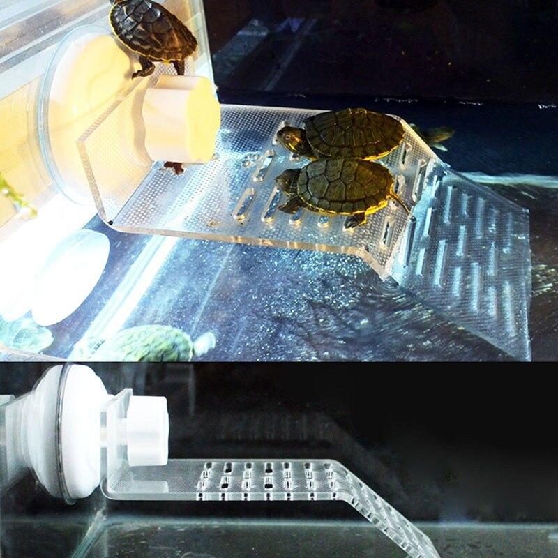 पारदर्शी प्लास्टिक - पशु उत्पादों