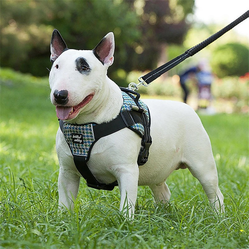 Professional Large Dog Harness Strong Pet Training Vest Breed Animal Big Dog Leash Set Soft Walk professional large dog harness strong pet training vest breed animal