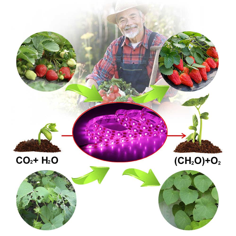 Светодиодный свет для выращивания всего спектра USB светодиодные полосы света 0,5 м 1 м 2 м 2835 Чип светодиодный Фито лампы для теплицы для гидропонного выращивания растений