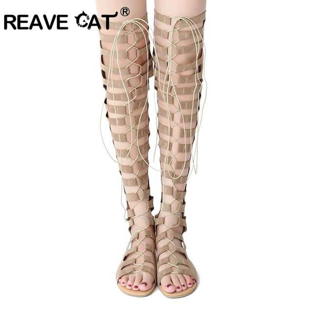 7b3f3b85bd0 REAVE CAT Brand Women summer boots Over the knee boots Cross tied Zipper Openwork  Sexy Fashion Flats Flock New arrive Big A352