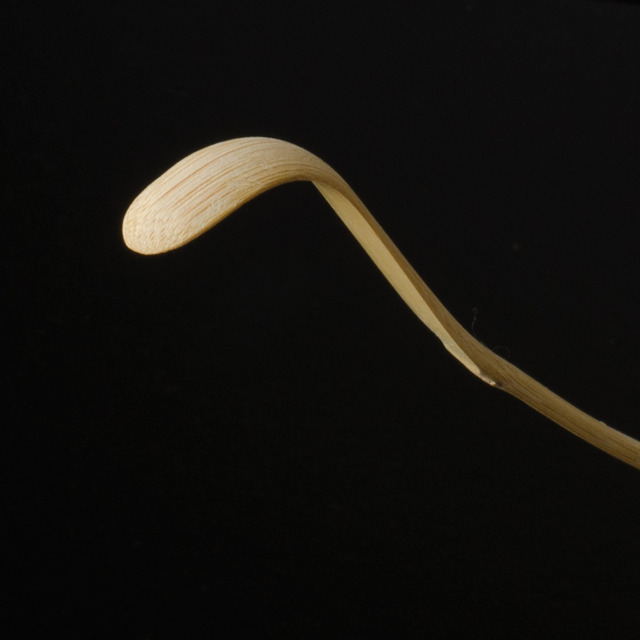 Wholesale 10pcs Retro Natural Bamboo Matcha Scoop Tea Tools Powder matcha Spoon Japanese Tea Ceremony Tools Matcha Tea Measure