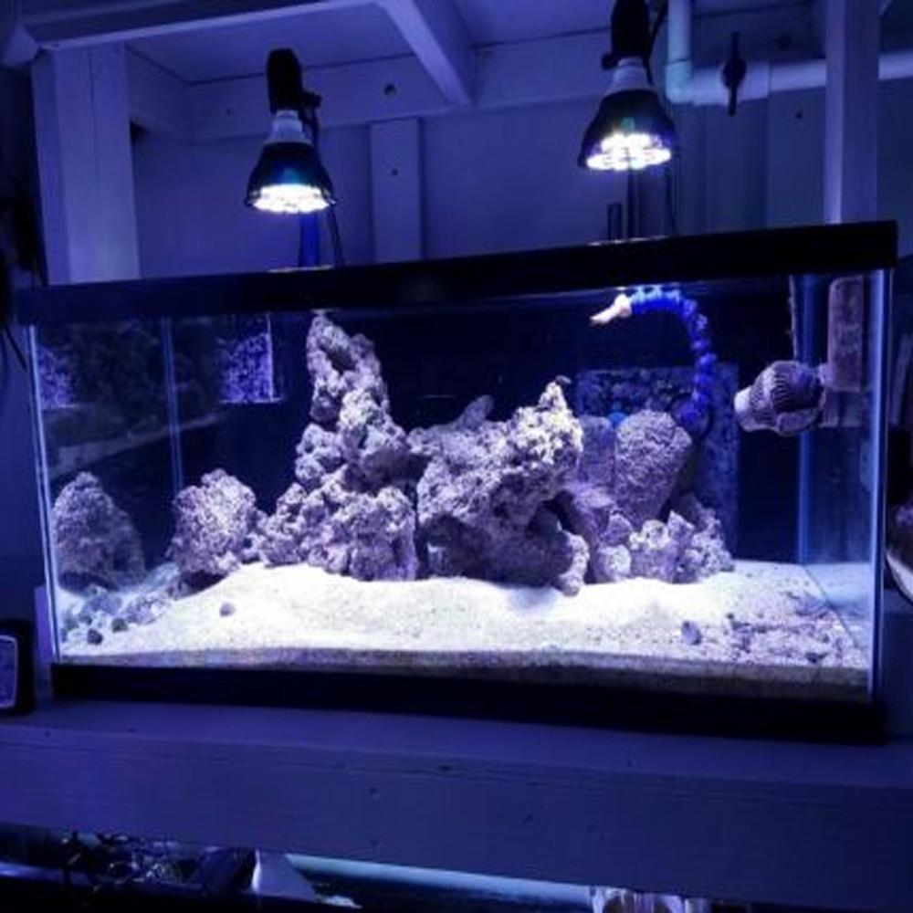 54W LED Reef Aquarium Lighting E27 PAR38 LED Full Spectrum Coral Plant Grow Light Fish Tank Aquarium Lamp for SPS LPS Soft Coral apollo 16 192 3w led aquarium lamp white blue 1 1 full spectrum reef coral led light white 12000k