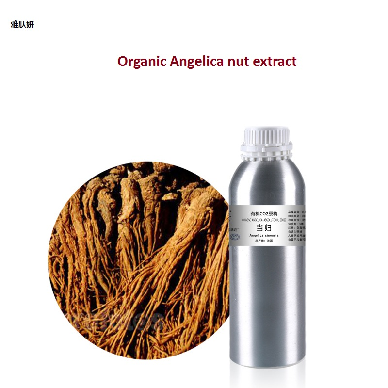 Cosmetics massage oil 50g/bottle Angelica nut extract  essential base oil, organic cold pressed Angelica extract cosmetics 50g bottle chinese herb ligusticum chuanxiong extract essential base oil organic cold pressed