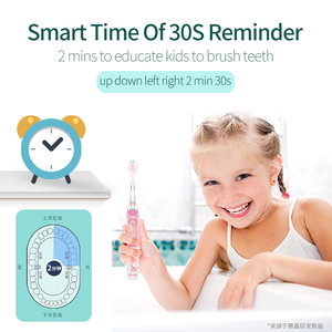 Image 5 - SEAGO 전동 칫솔 어린이를위한 소닉 배터리 치아 브러쉬 어린이 디자이너 브랜드 다채로운 LED 라이트 (5 세 이상) SG977