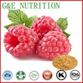 100% Natural Raspberry Extract, Raspberry Extract Powder,  200g