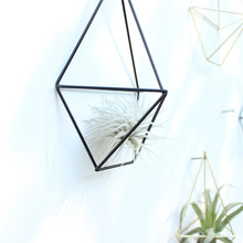 Rustic Wall Mount Hanging Geometric Metal Tillandsia Air Plants Holder Rack Black Wall Accent Decor