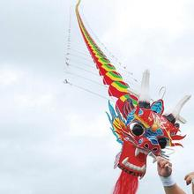 Высокое качество 20 м большой воздушный змей Китайский традиционный Дракон воздушный змей линия Летающий феррамента Божья коровка кевлар кайтборд 3d воздушный змей сова