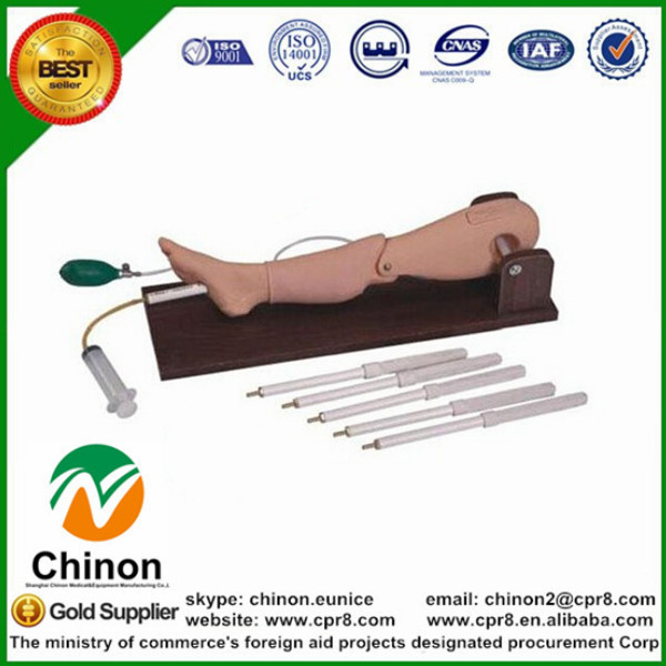 BIX-L65A medical Training Bone Puncture Femoral Vein Puncture Model  MQ63BIX-L65A medical Training Bone Puncture Femoral Vein Puncture Model  MQ63