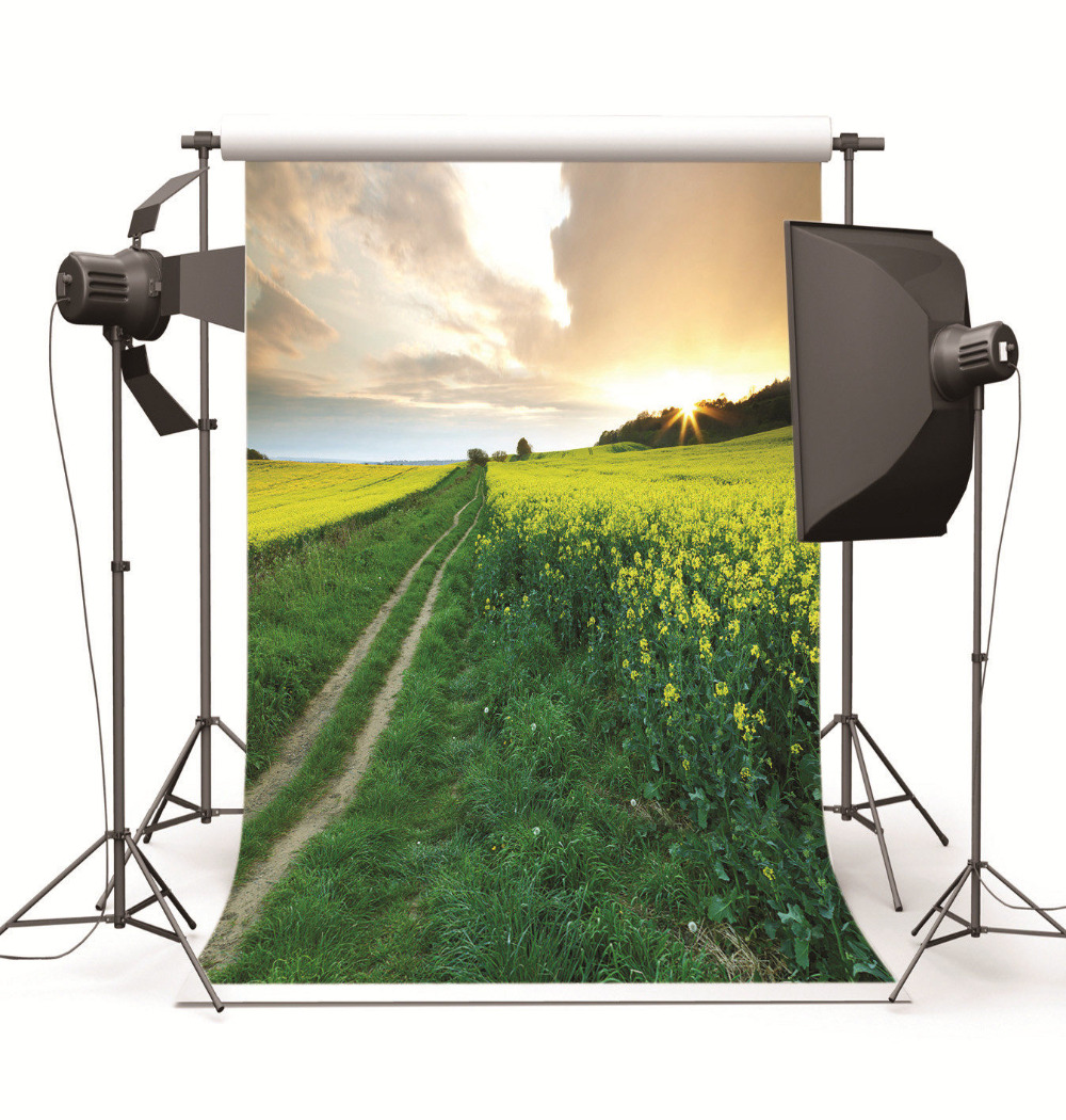 Computer Printed Photography Background Scenic Art Fabric