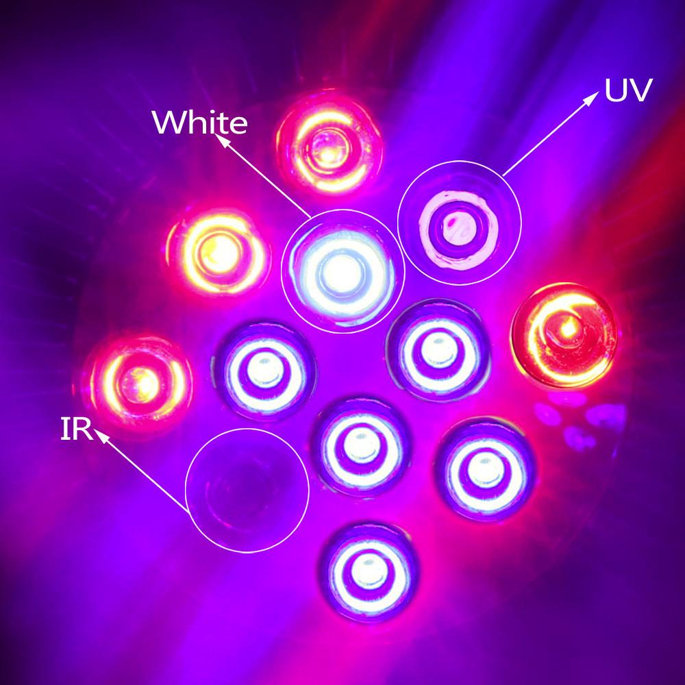 led grow light 6