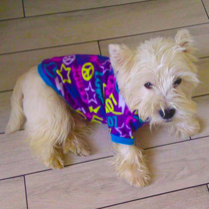 Estilo de graffiti Ropa para perros para perros pequeños Ropa de abrigo para perros mascotas para perros Ropa para perros Ropa para perros Teddy Chihuahua Coat 16S2