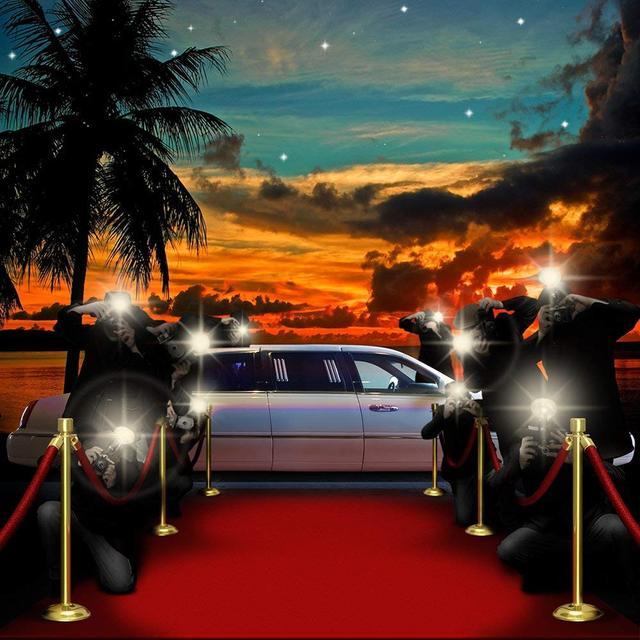 Coucher de soleil Boulevard paparazzi Vip tapis rouge palmier voiture arrière-plan ordinateur impression parti photo toile de fond