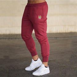 2019 тонкий мужской с принтами с буквами тренировочные брюки для девочек джоггеры мужской Calca Masculina хип поп повседневные штаны Jogger трек одежда