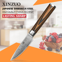 XINZUO 3.5 inch fruit knife Damascus steel kitchen knives sharp Japanese vg-10 paring knife color wood handle FREE SHIPPING