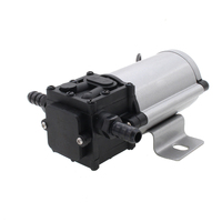 Professional Gasoline Petro Pump DC 12V 24V Diesel Fuel Oil Extractor Transfer 10L Min