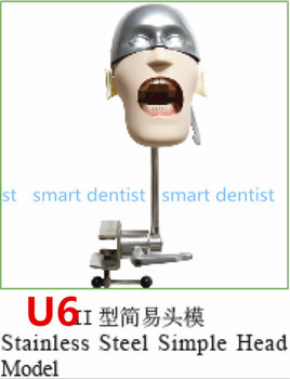 Good Quality Stainless steel simple head model Apply to the oral cavity simulation training fixed on the dental chair