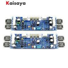 2 PCS אודיו L12 2 כוח מגבר ערכת 2 ערוץ במיוחד נמוך עיוות קלאסי AMP DIY ערכת סיים לוח A10 011