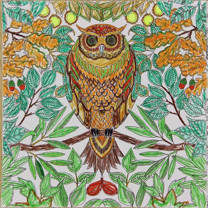 Ручной росписью исследовать Wonderland раскраска 24 страницы Secret Garden граффити книга живописи