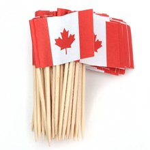 Lot of 50 Pcs Mini Wooden Toothpick with Flag for Decor of Party Fruit Pastry – Canada