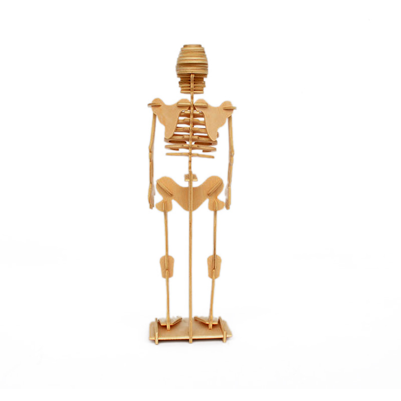 Artificial Skeleton Wooden Mannequin Toys 3D Human Body