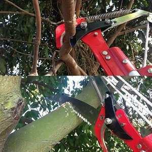 Image 4 - Extendable Scissors Pruning Tool Tall Tree Branch Lopper High Altitude Shears Picking Fruit Garden Trimmer Saw Branches Cutter