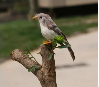 Garden ornaments picture more detailed picture about for Artificial birds for decoration