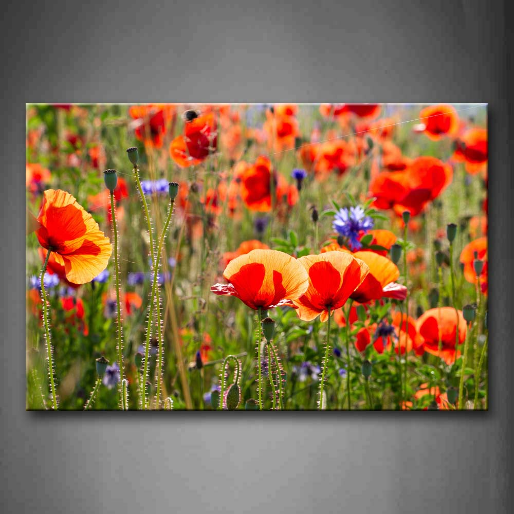 Unframed Wall Art Pictures Red Purple Flowers Canvas Print Flower Posters No Frames For Living Room Home Office Decor in Painting Calligraphy from Home Garden