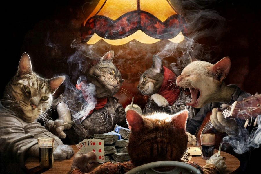 NICOLESHENTING Cats Playing Poker Cards Art Silk Fabric Poster Canvas Print 13x20 24x36inch Funny Pictures Home Wall Decor