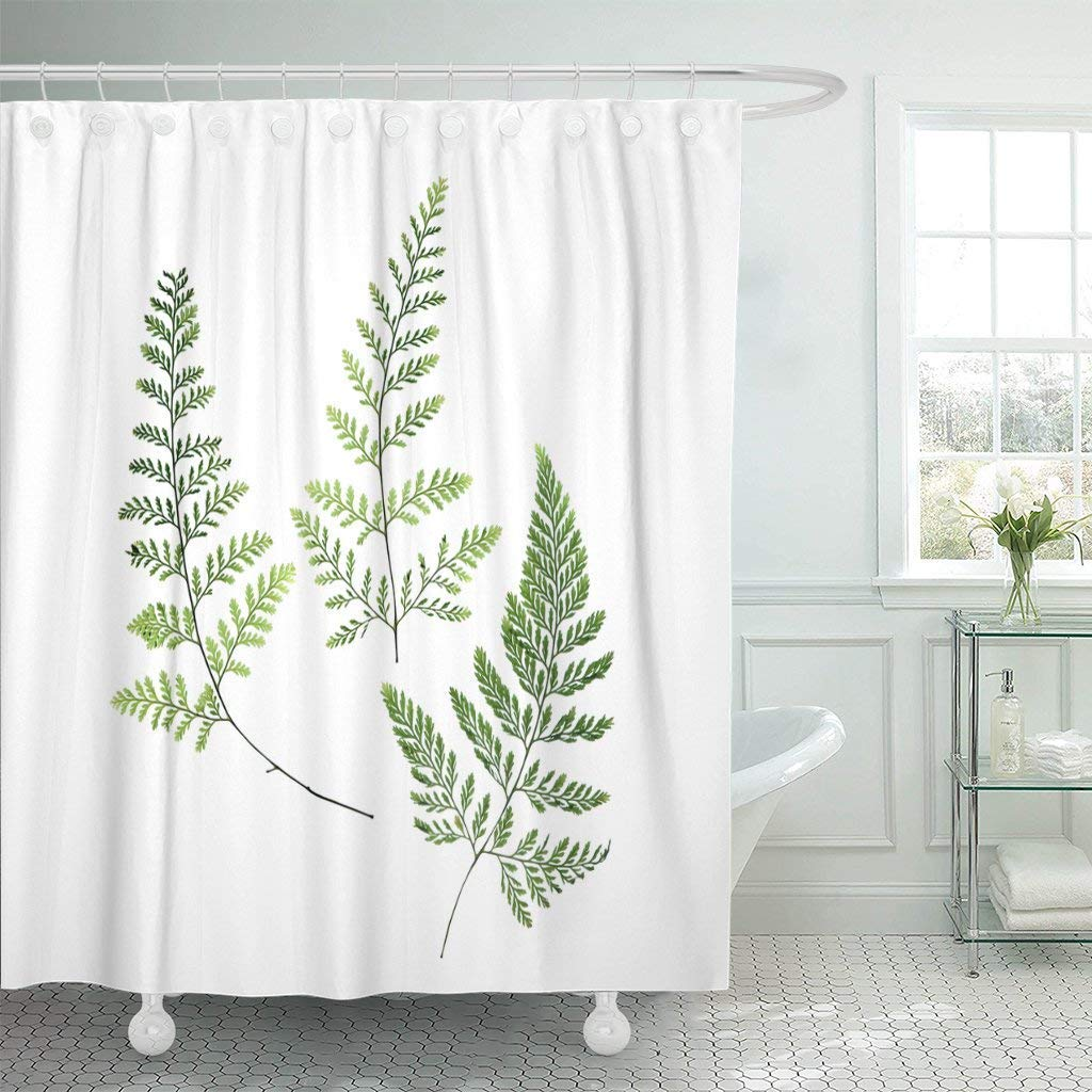 Shower Curtain Hooks Green Leaf Three Fern Leaves White Botanical Branch Curve Delicate Detail Foliage Decorative Bathroom