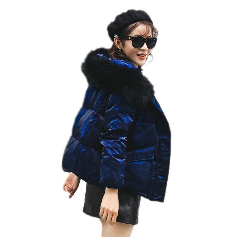 Зимние MS золото бархат утолщение пуховая куртка Новые Модные короткий с капюшоном меховой воротник корейской версии толстый бархат теплая