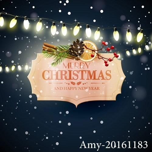 Amy-20161183