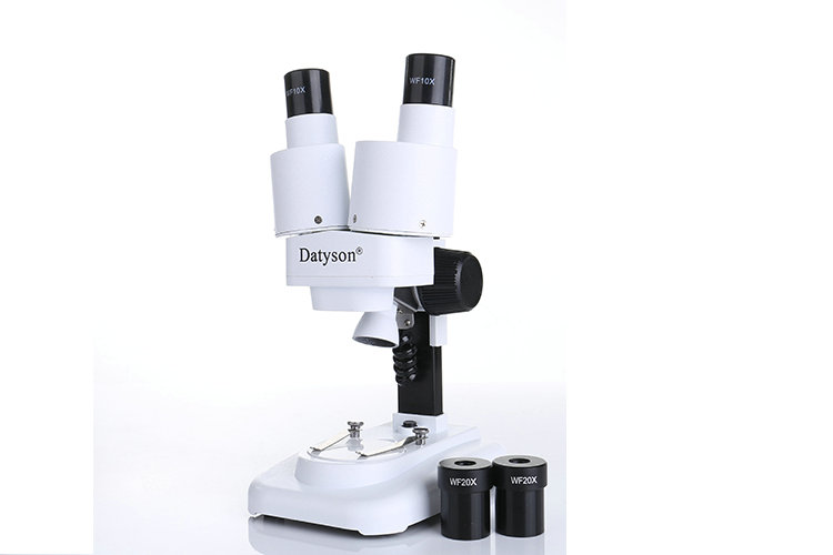 Datyson 20X 40X LED Binocular Stereo Microscope PCB Solder Tool Insect Plant Watch Students Science Educational