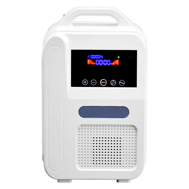 1L/Min 110V/220V Portable Home Oxygen Concentrator O2 Generators Air Purifier With Car Adapter MINI Machine