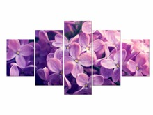 5 Pieces Free Shipping Canvas Prints Purple Orchid Wall Art Picture Paintings Home Decor Artwork Framd
