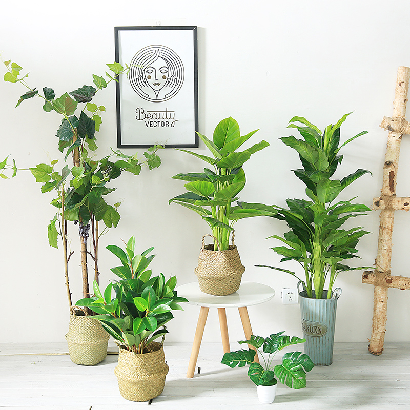 oversized potted snake plants for living room idea   Aliexpress.com : Buy Artificial Plant Nordic Simulation ...