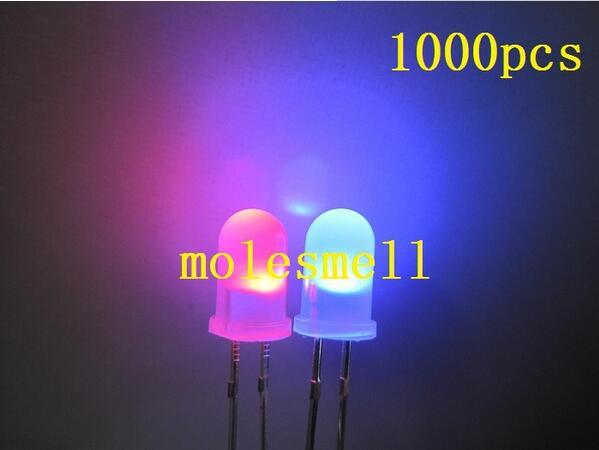1000pcs 5mm Dual Bi Color Polar Changing diffused Red blue Led diffused Leds 2 Pin led