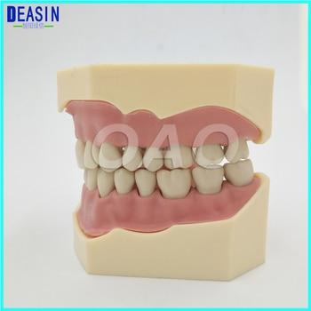 Dental Soft Gum Teeth Model Removable 28pc Teeth NISSIN 200 KAVO head model Compatible nissin di700a sony