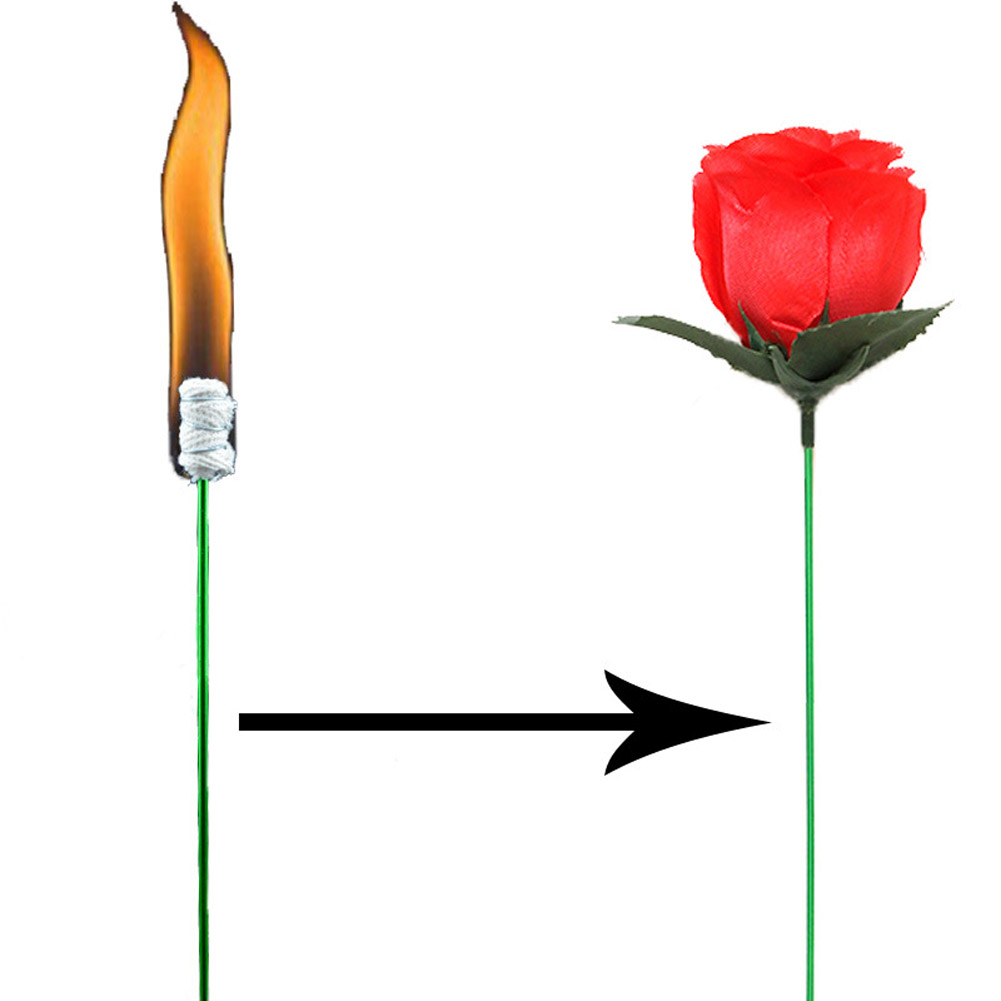 Valentines Day Present Torches Change Roses Magic Tricks Funny Novelty Surprise Prank Jo ...