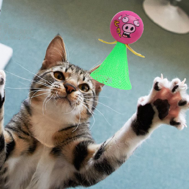 [MPK 10 Years] Jumping Cat Toy, Pet Cat Toy, Toy for Cats