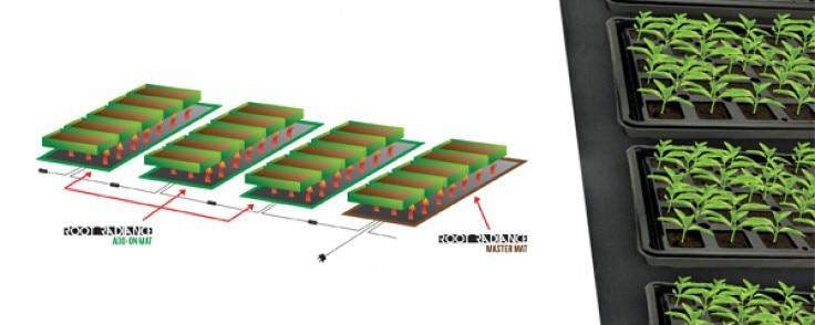 """10 """"x 20,75"""" 527x254mm de plántulas de estera de calor para la clonación de propagación que"""