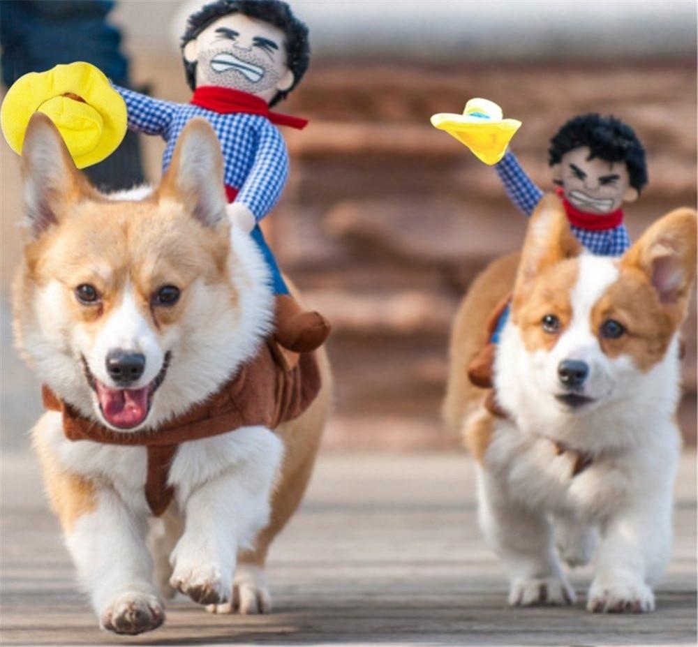 funny dog costumes - 800×800