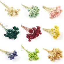 12 Pcs Epoxy Filler Dry Flowers Embossed Eternal Flower Jewelry Making DIY Handmade Filling Material Accessories