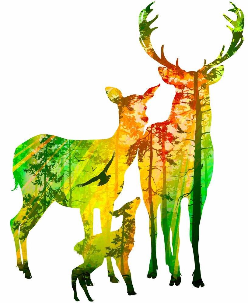 소나무 숲 캔버스 아트 인쇄 포스터, 홈 장식, 홈 장식 벽 그림 사슴 가족의 실루엣