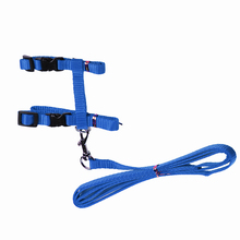 Adjustable muti color Pet Dog Leash Small Puppy Cat Kitty Nylon Leash Harness Collar Lead cat traction rope supply
