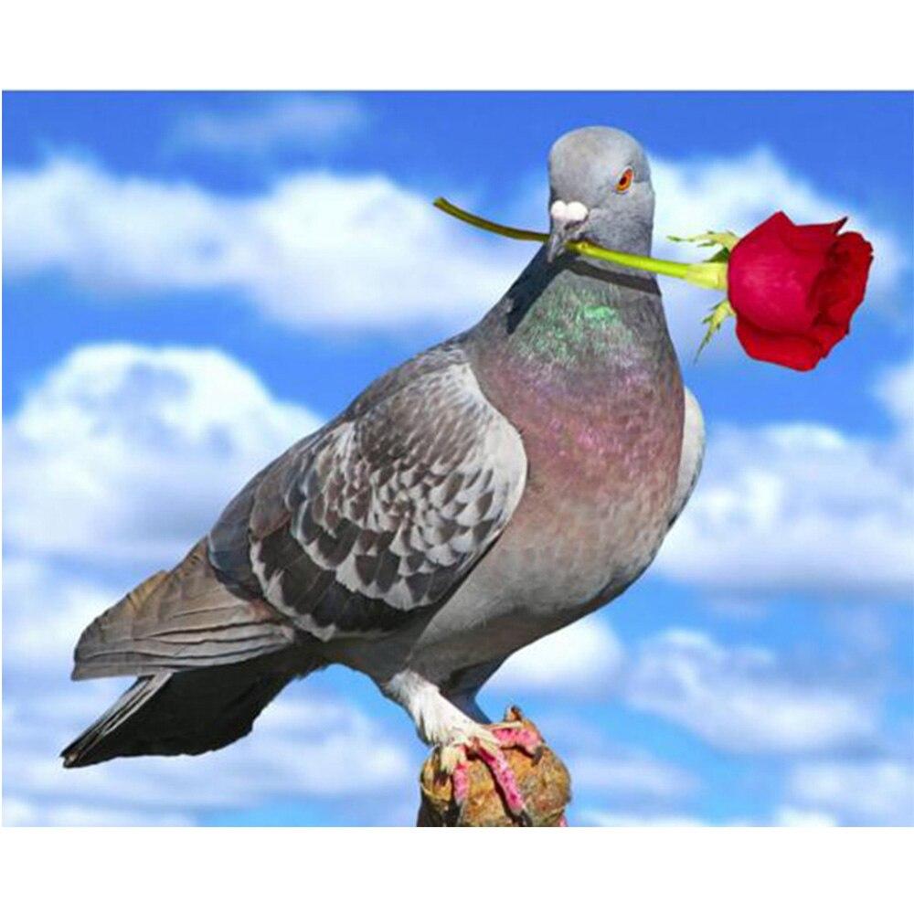 holubi a růže pittura diamante punto 5d croce di Diamanti ricamo animali resina mosaico kit Europa home dekor hobby nástěnná malba L03