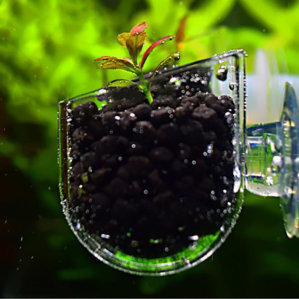 Creative Aquarium Fish Tank Glass Plant Cup Red Worm Feeding Container Holder Plant Cup