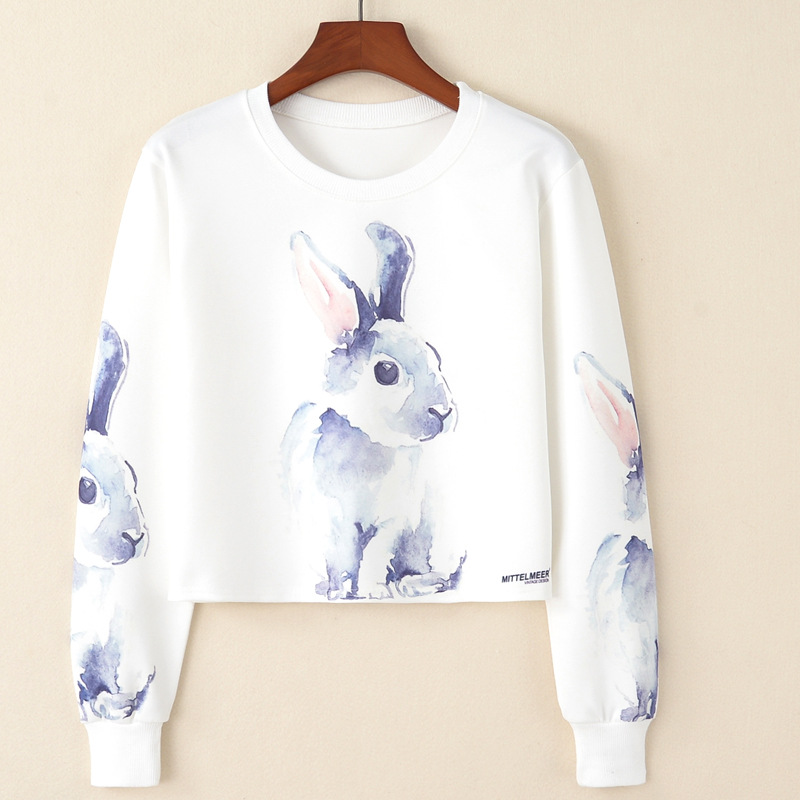 Bts Harajuku-set Tintendruck Kopf Kaninchen Damenmode Kurzarm Hoodies