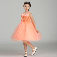 Retail Flower Communion Dresses For Girls Appliques Decoration Pearls Flower Girl Dresses For Kids Girl Children