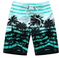 2016 HOT Quick Dry Men Shorts Brand Summer Casual Clothing Coconut Trees Swimwears Beach Shorts Men's Board Shorts